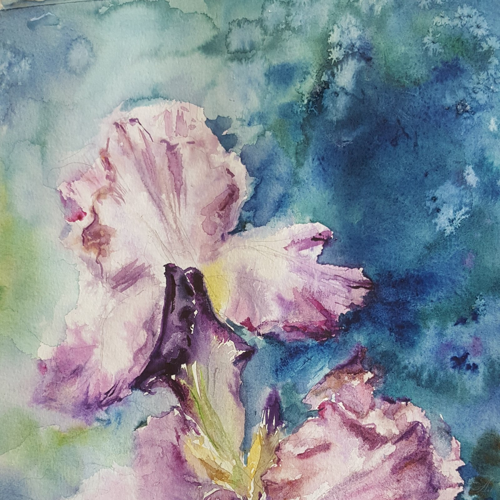 My watercolors